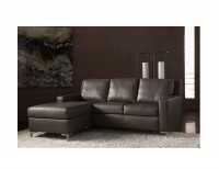 American Leather Brynlee 2pc Sectional with sleep sofa